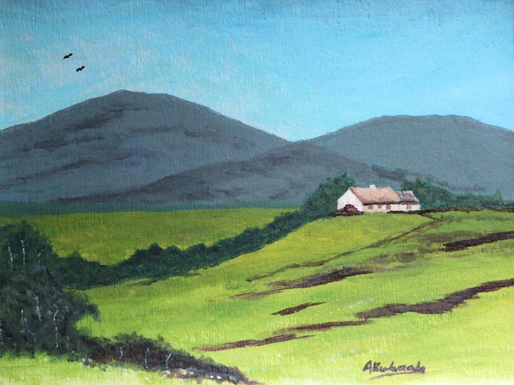 Szkockie pola